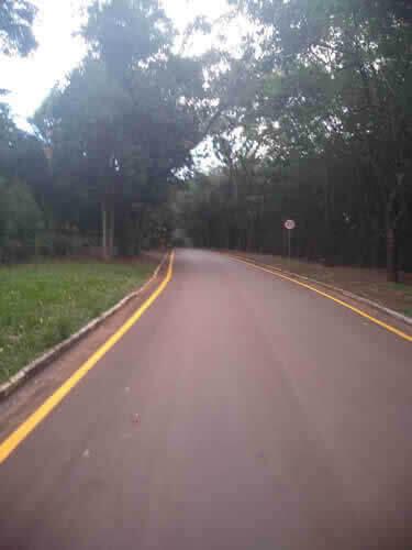 Ruas com Faixas Amarelas Sinalização